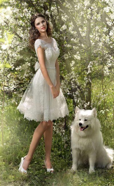 Короткое свадебное платье с открытой глубоким вырезом спинкой и пышным бантом под ней.