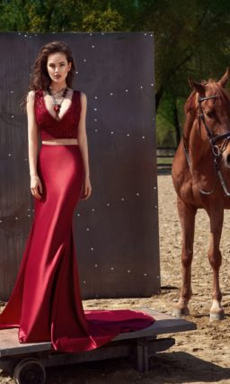 Раздельное платье темно-красного цвета